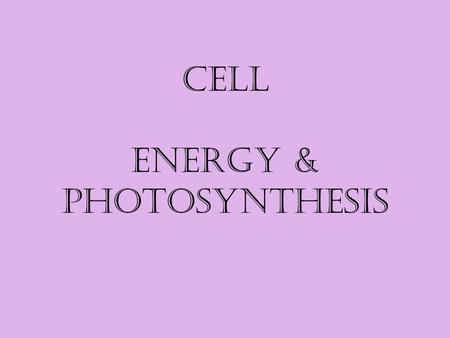 Cell Energy & Photosynthesis. Source of Energy In most living organisms the energy in most food comes from? the sun autotroph – 'auto' – self, 'troph'