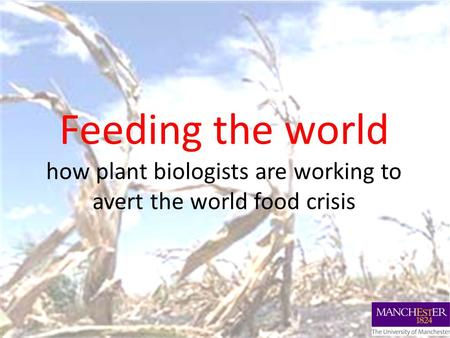 Feeding the world how plant biologists are working to avert the world food crisis.
