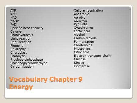 Vocabulary Chapter 9 Energy