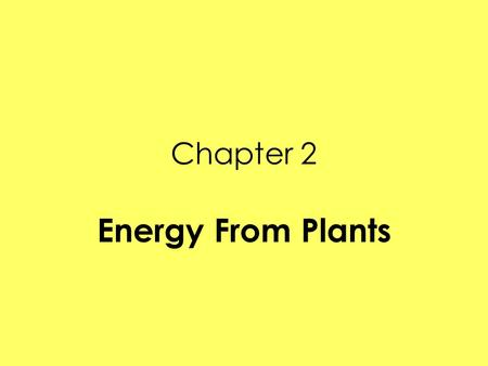 Chapter 2 Energy From Plants.