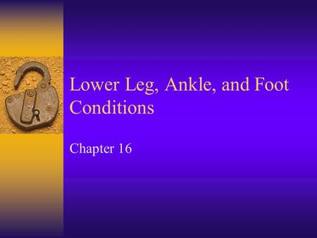 Lower Leg, Ankle, and Foot Conditions Chapter 16.