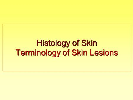 Histology of Skin Terminology of Skin Lesions