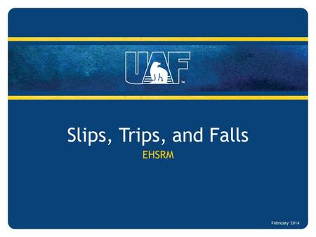 Slips, Trips, and Falls EHSRM February 2014. Slips, Trips, and Falls Target Audience – All UAF employees and students Objectives – Increase employee awareness.