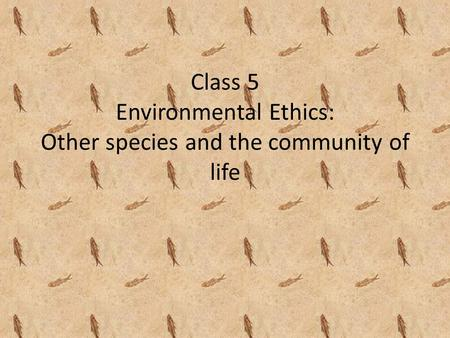 Class 5 Environmental Ethics: Other species and the community of life.
