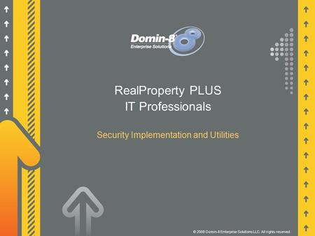 RealProperty PLUS IT Professionals Security Implementation and Utilities © 2009 Domin-8 Enterprise Solutions LLC. All rights reserved.