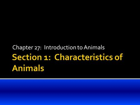 Chapter 27: Introduction to Animals.  Heterotrophy  Animals are heterotrophs – that is, they can not make their own food.  Most animals move from place.