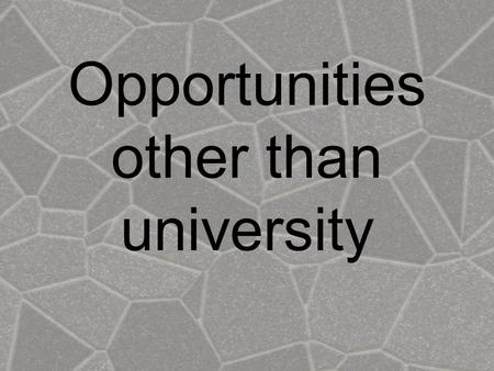 Opportunities other than university. What is on offer other than degrees? Employment Gap year activities Further Education Part time study Volunteer work.