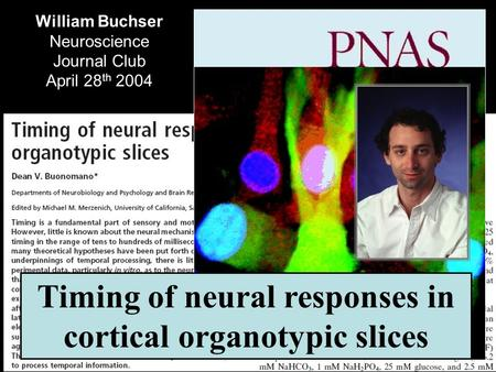 William Buchser Neuroscience Journal Club April 28 th 2004 Timing of neural responses in cortical organotypic slices.