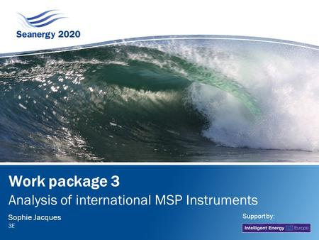 Work package 3 Analysis of international MSP Instruments Sophie Jacques 3E Support by: