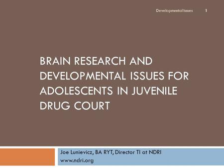BRAIN RESEARCH AND DEVELOPMENTAL ISSUES FOR ADOLESCENTS IN JUVENILE DRUG COURT Joe Lunievicz, BA RYT, Director TI at NDRI www.ndri.org Developmental Issues.