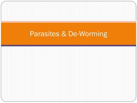 Parasites & De-Worming. Parasites. Small Redworm (small strongyles)- these absorb themselves into the gut wall. They are thin and up to 2.5cm long, and.