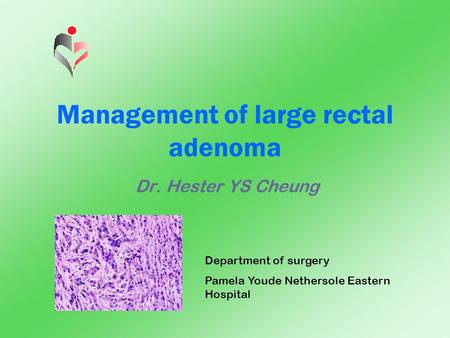 Management of large rectal adenoma Dr. Hester YS Cheung Department of surgery Pamela Youde Nethersole Eastern Hospital.