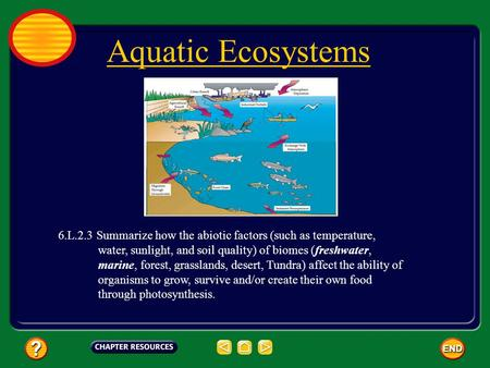 Aquatic Ecosystems 6.L.2.3 Summarize how the abiotic factors (such as temperature, water, sunlight, and soil quality) of biomes (freshwater,