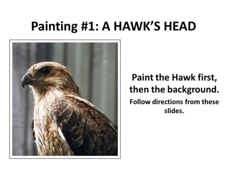Painting #1: A HAWK'S HEAD Paint the Hawk first, then the background. Follow directions from these slides. Burnt Siena.