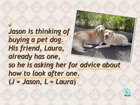 Jason is thinking of buying a pet dog. His friend, Laura, already has one, so he is asking her for advice about how to look after one. (J = Jason, L =