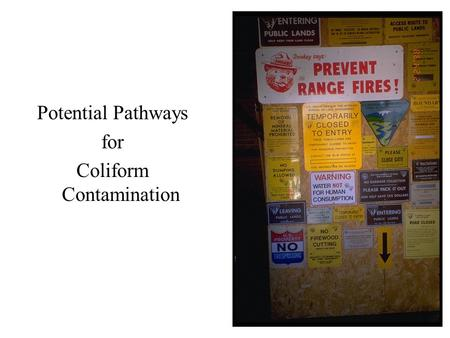 Potential Pathways for Coliform Contamination. Fixing Positive Coliform Results.