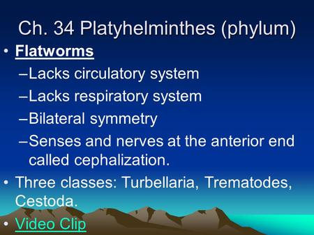 Ch. 34 Platyhelminthes (phylum) Flatworms –Lacks circulatory system –Lacks respiratory system –Bilateral symmetry –Senses and nerves at the anterior end.