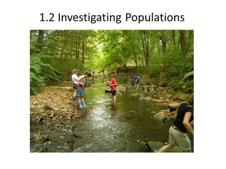 1.2 Investigating Populations. Learning Objectives Recap yesterday. Elaborate on a few things. Study the different ecological techniques used to study.
