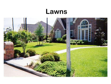Lawns. Purpose of lawns Ornamental Recreation Utility.