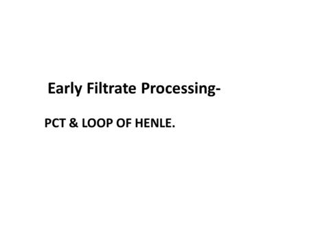 Early Filtrate Processing-
