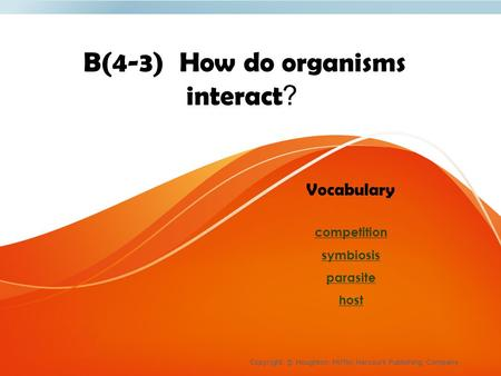 B(4-3) How do organisms interact? Copyright © Houghton Mifflin Harcourt Publishing Company Vocabulary competition symbiosis parasite host.