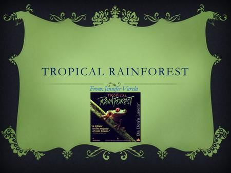 TROPICAL RAINFOREST From: Jennifer Varela DESCRIPTIONS -It has a lot of rain. -Never snows. -Stays hot year round. -Very wet soil covered with lush,