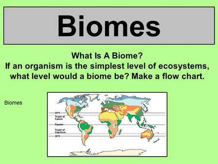 Biomes What Is A Biome? If an organism is the simplest level of ecosystems, what level would a biome be? Make a flow chart. Biomes 1.