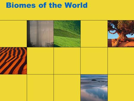 Biomes of the World. What is a biome? A BIOME is a large geographic area containing similar plants, animals, and climate.