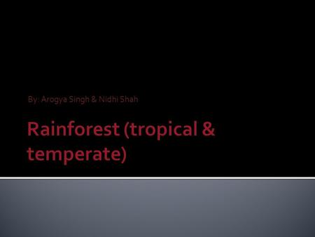 By: Arogya Singh & Nidhi Shah. The tropical & temperate rain forest can be found in three major geographical areas around the world.  Central America.