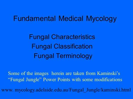 Fundamental Medical Mycology Fungal Characteristics Fungal Classification Fungal Terminology www. mycology.adelaide.edu.au/Fungal_Jungle/kaminski.html.