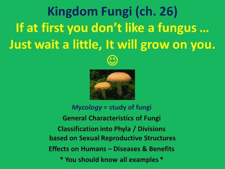 Kingdom Fungi (ch. 26) If at first you don't like a fungus … Just wait a little, It will grow on you.  Mycology = study of fungi General Characteristics.