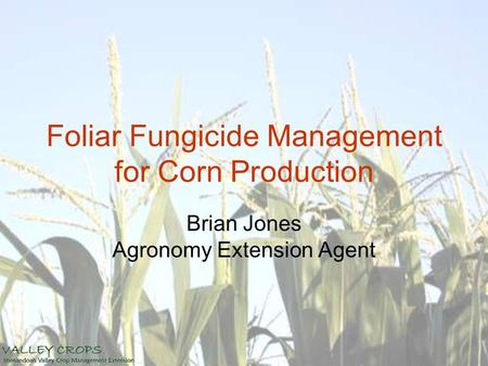 Foliar Fungicide Management for Corn Production Brian Jones Agronomy Extension Agent.
