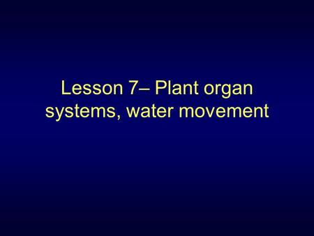 Lesson 7– Plant organ systems, water movement