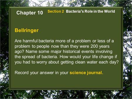 Chapter 10 Section 2  Bacteria's Role in the World Bellringer