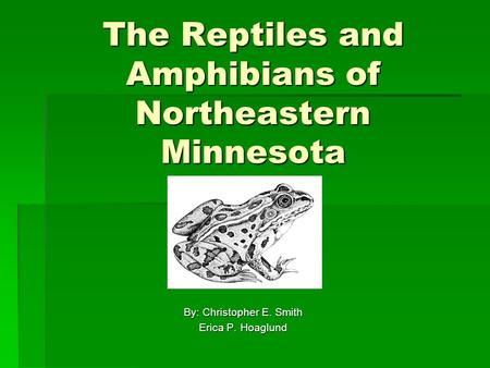 The Reptiles and Amphibians of Northeastern Minnesota By: Christopher E. Smith Erica P. Hoaglund.