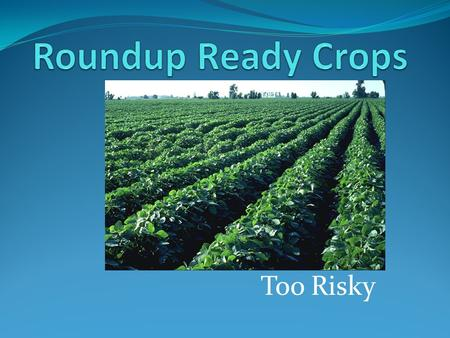 Too Risky. What are Roundup Ready Crops? Crops that have been genetically engineered to be resistant to Roundup herbicide Often these crops are made to.