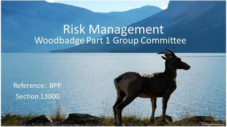 Risk Management Woodbadge Part 1 Group Committee Reference: BPP Section 13000.