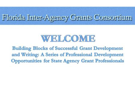 W HO A RE W E A group consisting of grant managers, financial specialists, government administrators and associated employees of the State of Florida.
