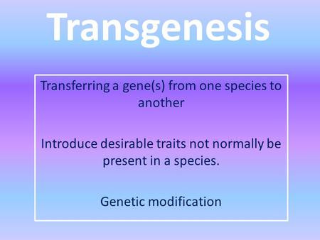 Transgenesis Transferring a gene(s) from one species to another Introduce desirable traits not normally be present in a species. Genetic modification.