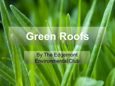 Green Roofs By The Edgemont Environmental Club. What are green roofs? Roofs that are either partially or completely covered with plants are considered.