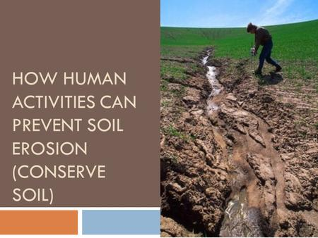 How Human Activities Can Prevent Soil Erosion (Conserve Soil)