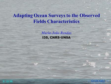 Adapting Ocean Surveys to the Observed Fields Characteristics Maria-João Rendas I3S, CNRS-UNSA.