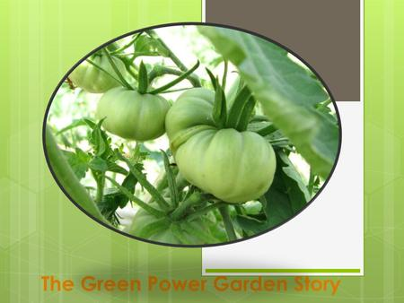 The Green Power Garden Story. The Mission  To compliment food programs in the Waukesha Area with fresh fruit and vegetables  Promoting healthy food.