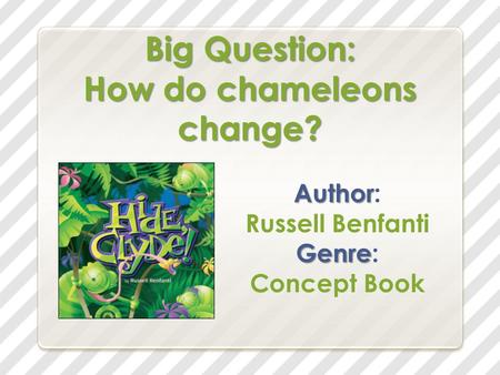Big Question: How do chameleons change? Author Author: Russell Benfanti Genre Genre: Concept Book.
