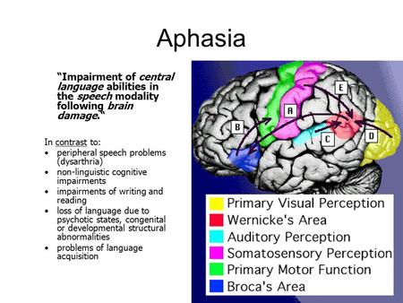 "Aphasia ""Impairment of central language abilities in the speech modality following brain damage."" In contrast to: peripheral speech problems (dysarthria)"