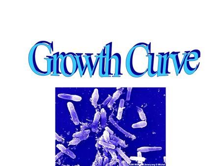 Growth Curve.