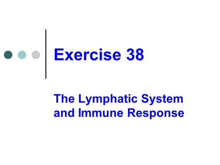 The Lymphatic System and Immune Response