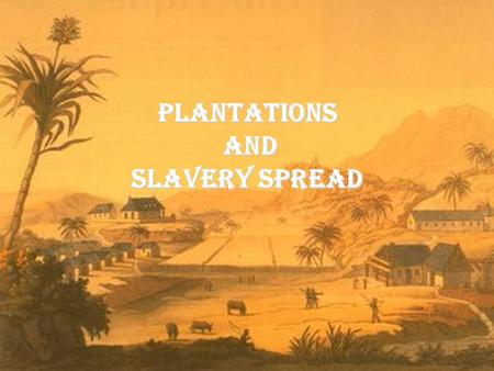 Plantations and Slavery Spread