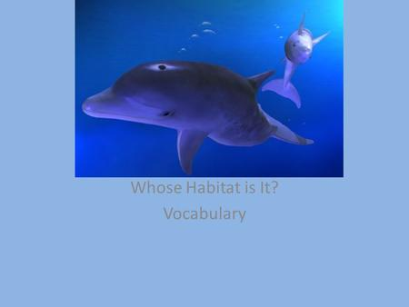 Whose Habitat is It? Vocabulary. neighborhood community; small section of a town or city I love my neighborhood.