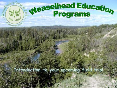 Introduction to your upcoming field trip!. Weaselhead History The Weaselhead / Glenmore Park Preservation Society was officially formed in 1994. The.